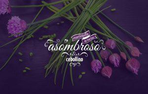 ambrosio-3