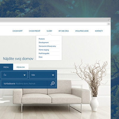 Development of custom graphic design for an estate agency website