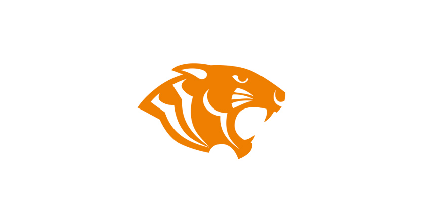 logo tiger group