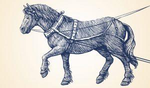ilustration-horse